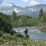 Beautiful Montana fly fishing
